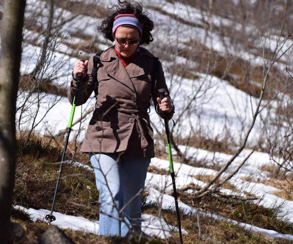 Nordic Walking am WildenKaiser
