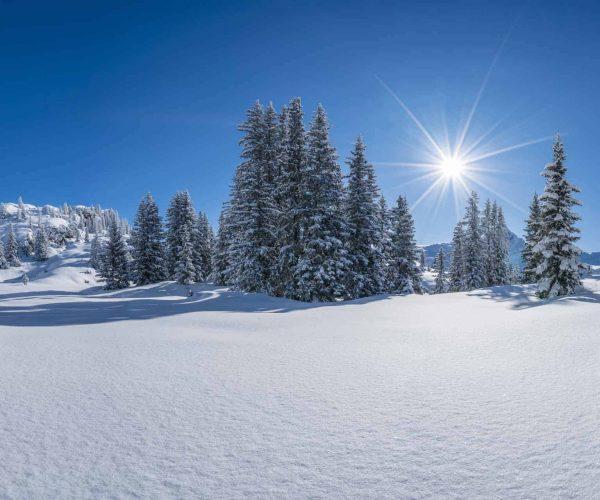 Aktivprogramm in der SkiWelt Wilder Kaiser Winterangebote