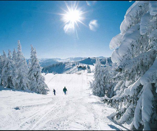 Pistenstatus in der SkiWelt